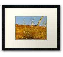 desert breeze Framed Print