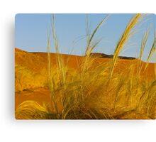 desert breeze Canvas Print