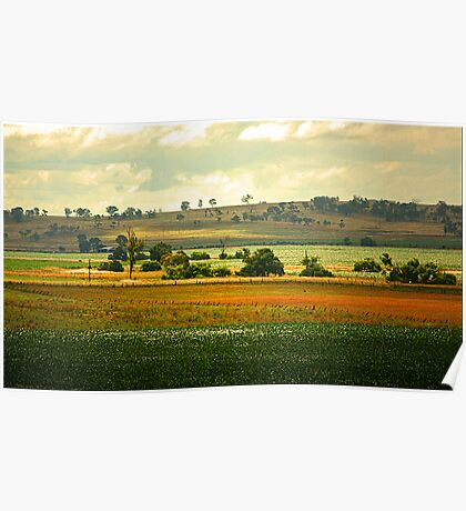 The Darling Downs Poster
