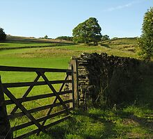 Six-bar gate and dry stone wall, Cumbrian hillside, England's Lake District by Philip Mitchell