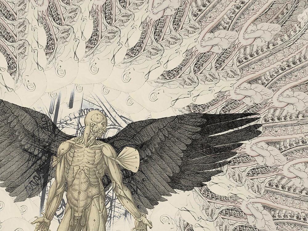 Anatomical Daedalus Designs concept by matteroftaste