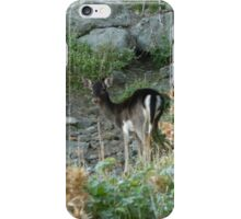 You Following Me? iPhone Case/Skin