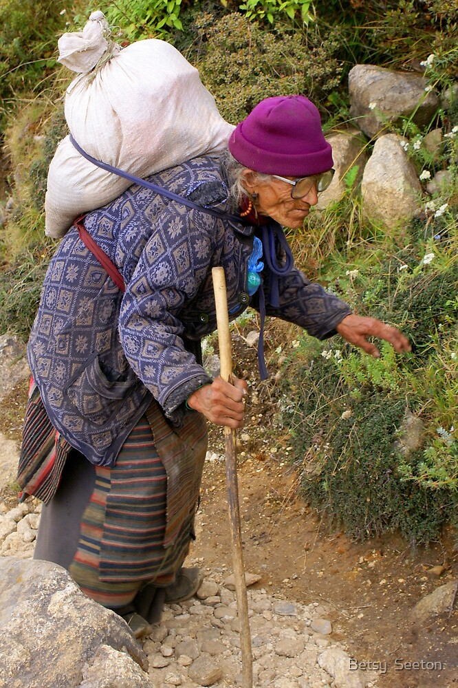 A REAL TREKKER by Betsy  Seeton