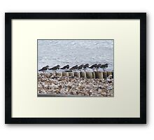 """whos going first "" Framed Print"
