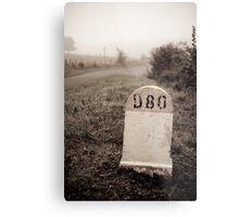 D80 landmark Metal Print