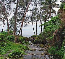 a wonderful Vanuatu landscape by beautifulscenes