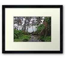 a wonderful Vanuatu landscape Framed Print
