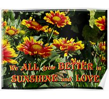 We all grow better in Sunshine and Love  Poster