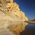 Terligua Creek by Lacy O.