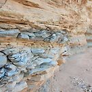 Terligua Creek layers by Lacy O.