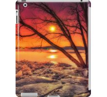 """""""Fire and Ice"""" iPad Case/Skin"""