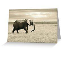 Elephant - Masai Mara, Kenya Greeting Card