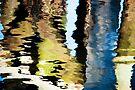 Dockside Reflect by Barbara Ingersoll