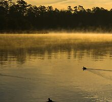 Dawn at Lake Woodlands 3, The Woodlands TX USA by GJKImages