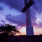Cross Mountain Summit, Fredericksburg, Texas by Tom Fant
