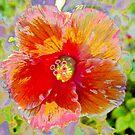 Rosy peach hibiscus by ♥⊱ B. Randi Bailey