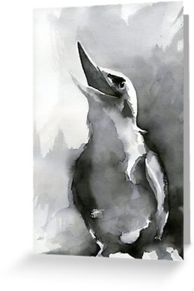 Laughing Kookaburra by Acey Thompson
