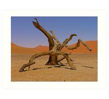 desert gladiators Art Print