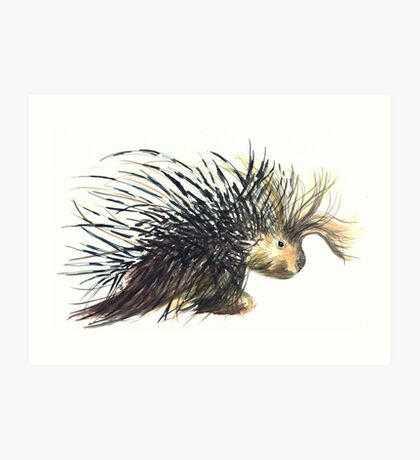 Coldprickly, a children's book story and illustration Art Print