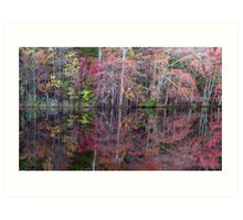 Canton, New Jersey USA Pond Peak Color Art Print