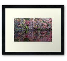 Canton, New Jersey USA Pond Peak Color Framed Print