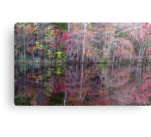 Canton, New Jersey USA Pond Peak Color Metal Print