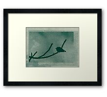 Little Bird On Pine Branch Framed Print