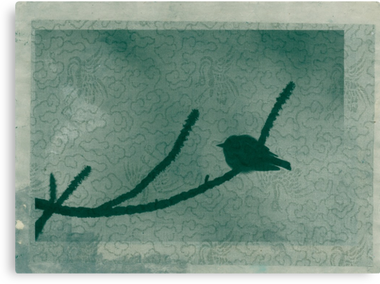Little Bird On Pine Branch by Antaratma Images