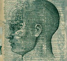 Phrenology Head by Antaratma Images
