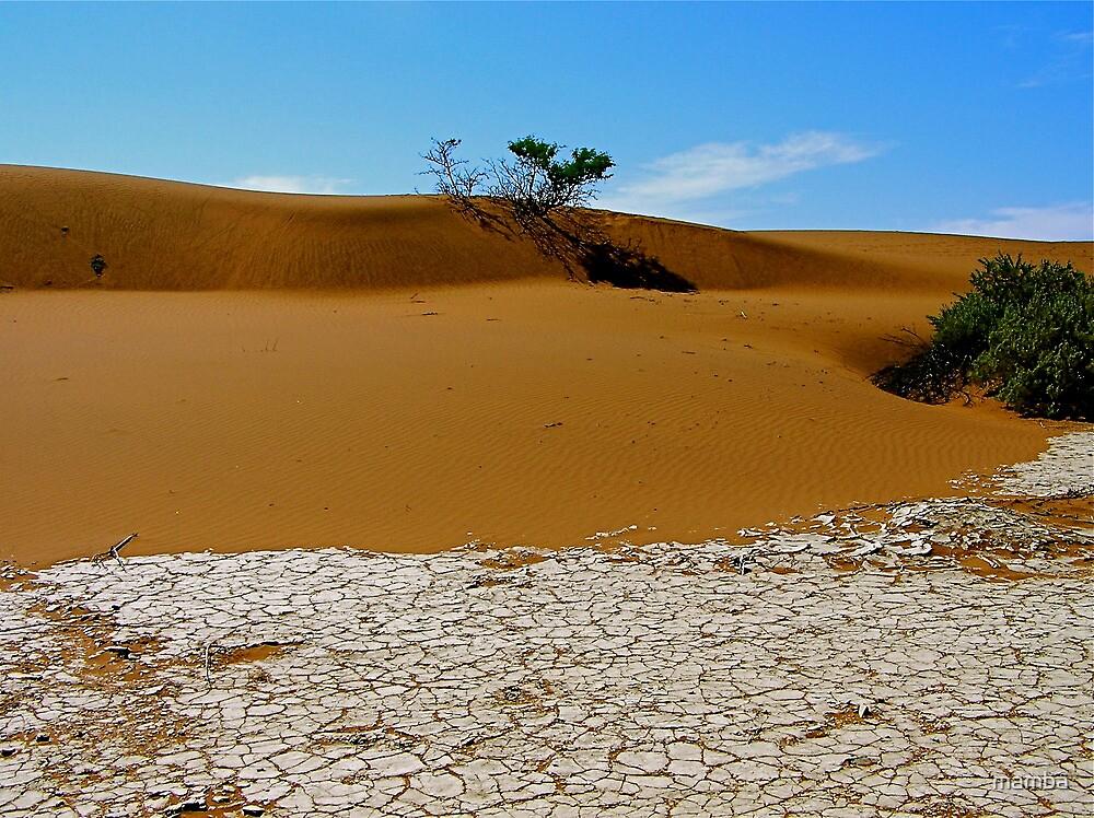 sand meets salt by mamba