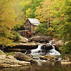 Grist Mill by Terry Best