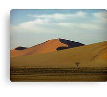 sandy curves Canvas Print