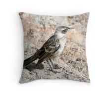 Galapagos Mockingbird Throw Pillow