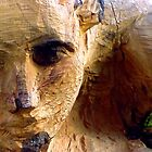 Face of a Carver by MikeShort