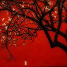 China Red [Orton] by peterrobinsonjr