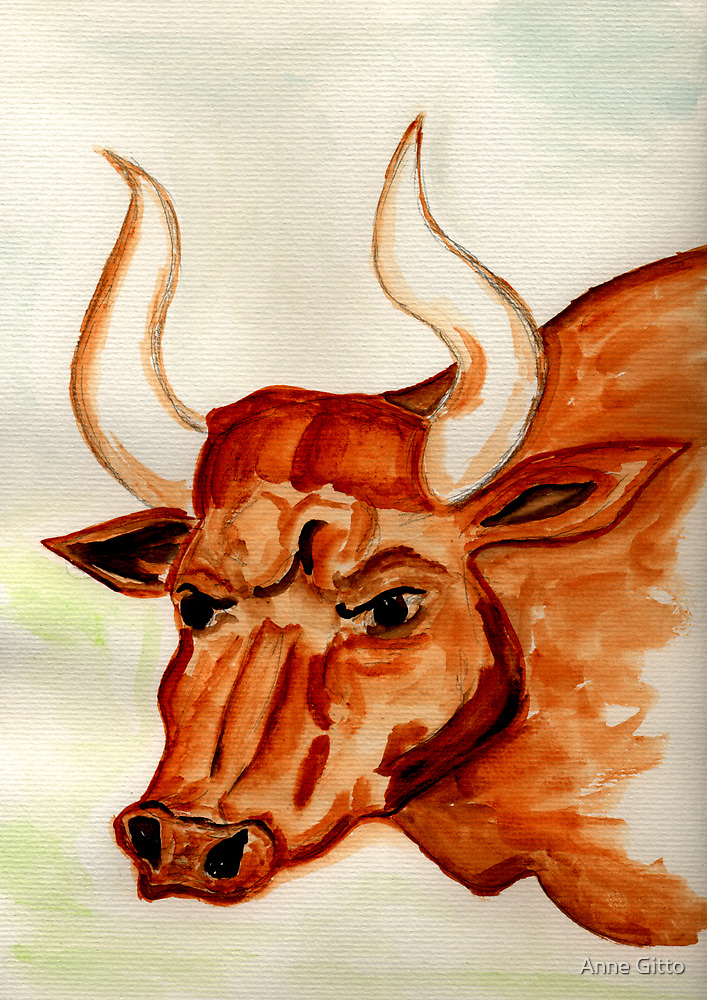 The Bull Horns by Anne Gitto
