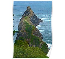 Port Orford Head Poster
