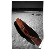 Red Paddle Boat, Playa Del carmen, Mexico Poster