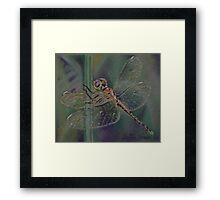 A Little Dragonfly Magic Framed Print