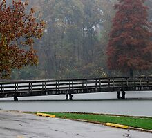 The Wooden Bridge in the Rain by barnsis