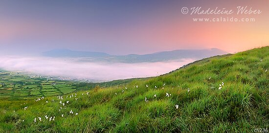 Foggy Sunrise overlooking Cahersiveen at 4am by Madeleine  Weber