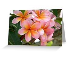 Frang time, aorbflowers,  Greeting Card