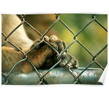 Let me out please 2..... Poster
