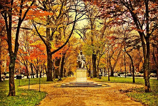 Commonwealth Ave in Boston by LudaNayvelt