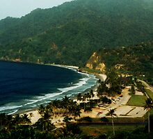 Maracas Bay by Wayne Gerard Trotman