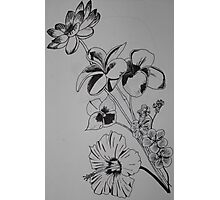 Ink Bouquet Photographic Print
