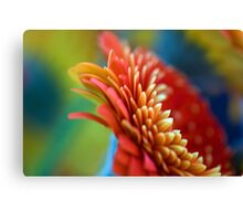 Petal Abstract Canvas Print