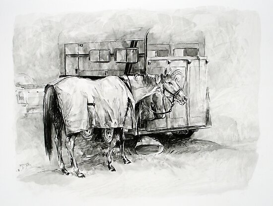 Exeter Show Horse by Pieter  Zaadstra