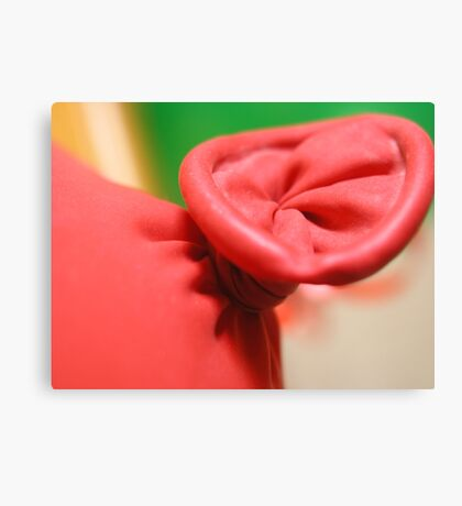 RED TIE Canvas Print