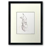 Darwin Took Steps - original sketch Framed Print